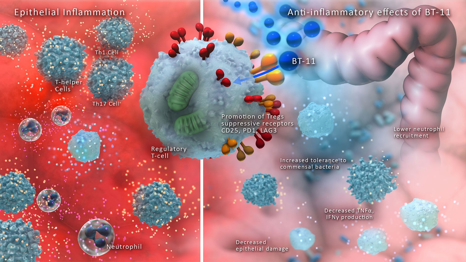Reprogramming Immune Responses in Autoimmune Diseases